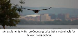 eagle_lake