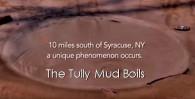 mud-boils